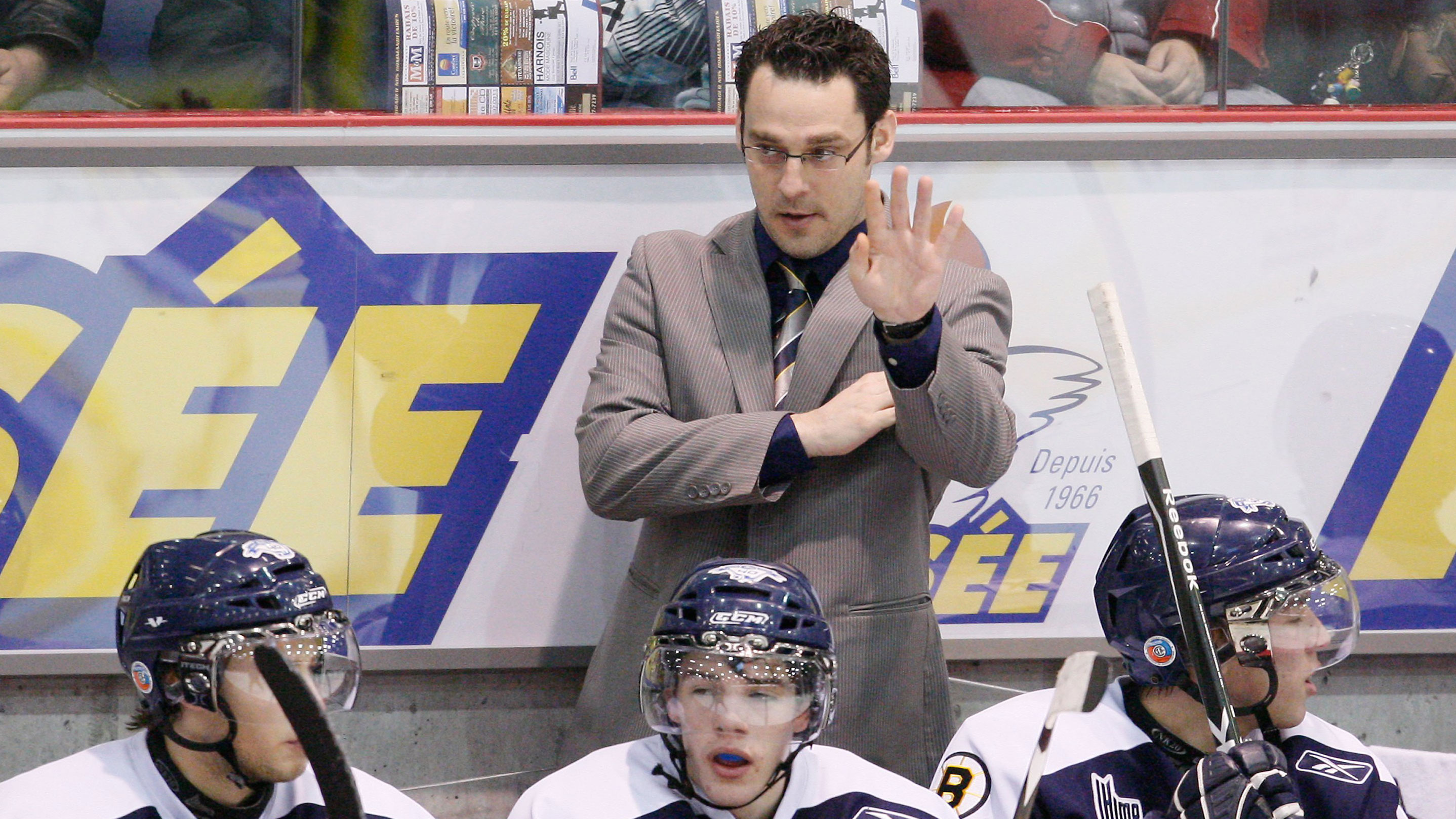 CHL: Memorial Cup Coach Veilleux Returns To League With QMJHL's Victoriaville Tigres
