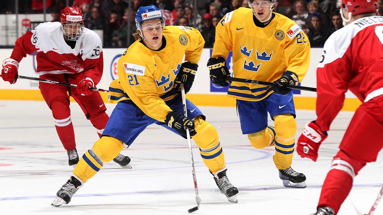William Nylander hockey statistics and profile at hockeydb.com