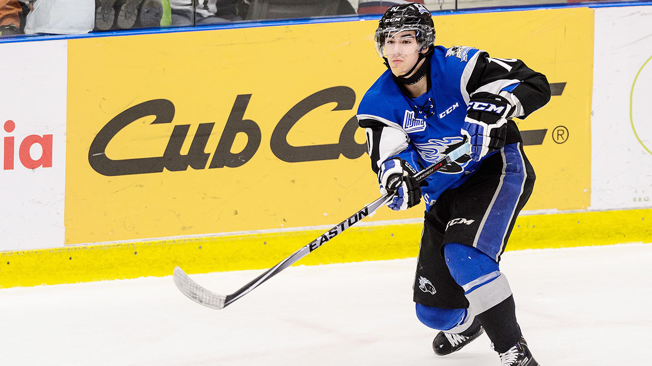 QMJHL: Roundup - Sea Dogs Earn Late Win Over Screaming Eagles