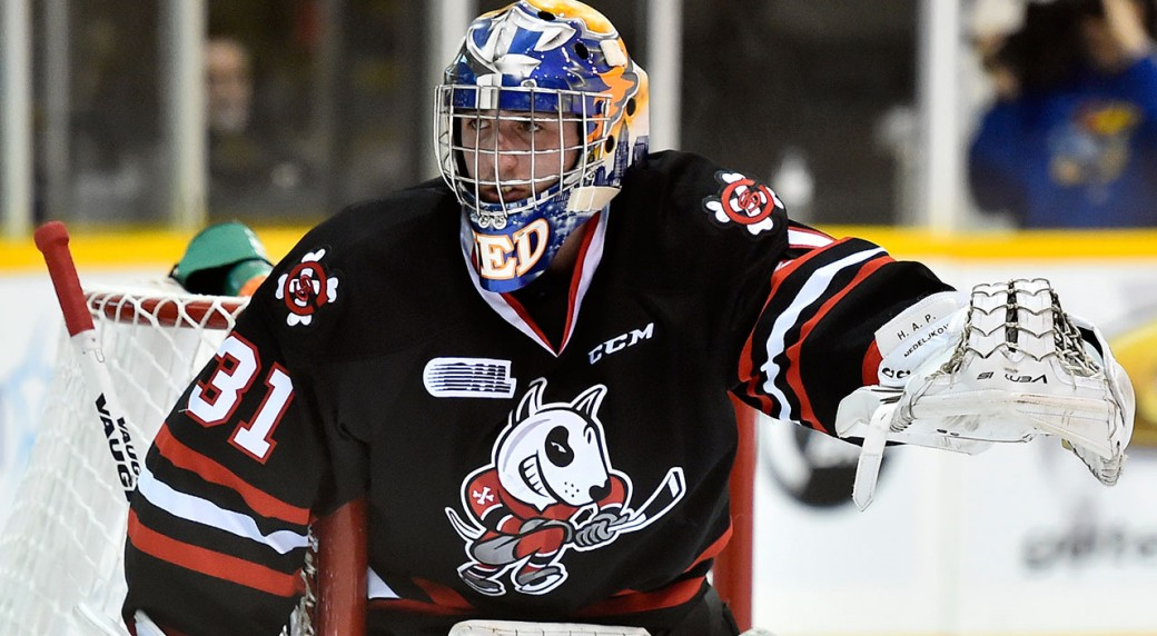 OHL: Friday Night Hockey Preview - IceDogs Vs. 67's