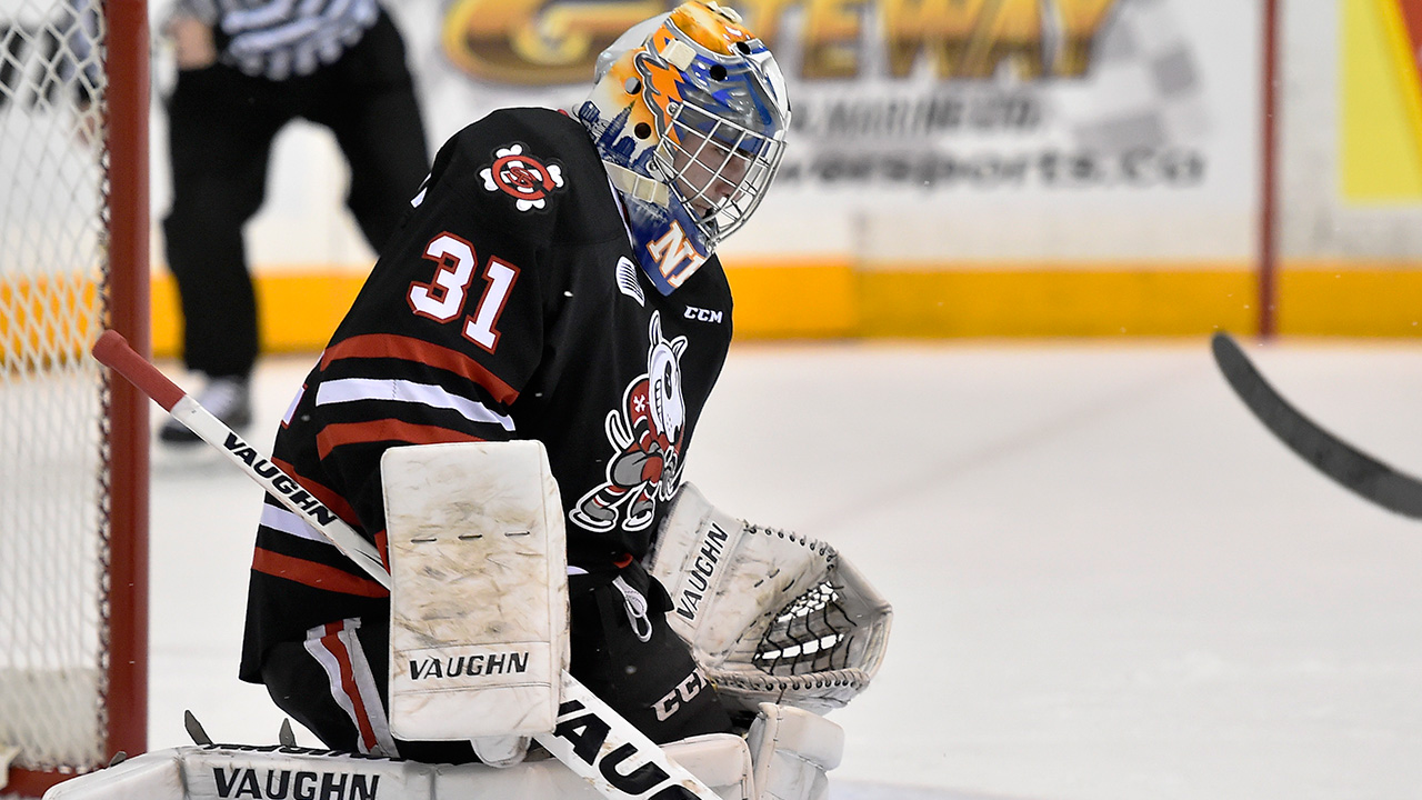OHL: Adding Nedeljkovic About 'more Than His Goaltending'