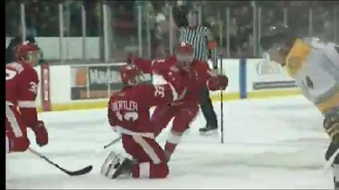 OHL: Guertler's 2OT Winner Gives Greyhounds Win Over Sting