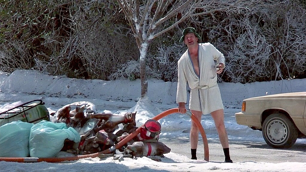 warnerbros_nlchristmasvacation_cousineddieshitter