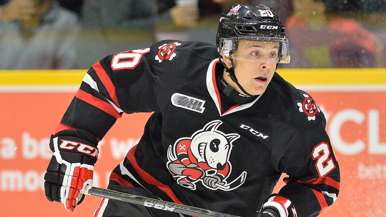 OHL: Roundup - Ondrej Machala Has 3 Points As IceDogs Hold Off Wolves