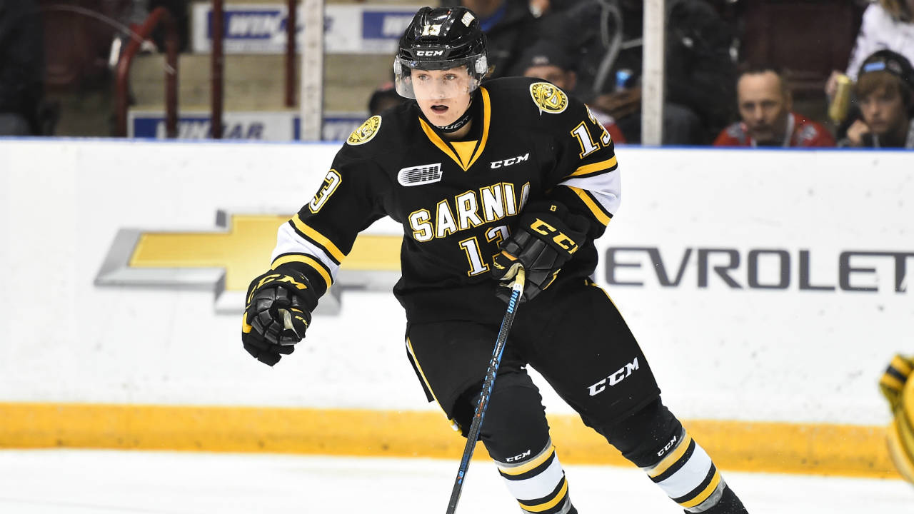 OHL: Keeping It Fun Has Sarnia Sting Rolling With 13 Straight Wins